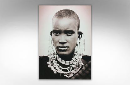 Picture of Woman Warrior