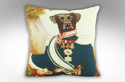 Picture of Earl Cushion