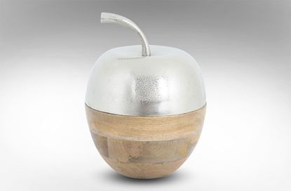 Picture of Elements Apple