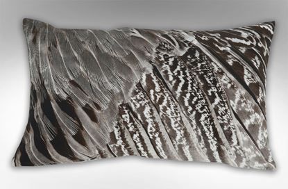 Picture of Feathered Wing Rectangle Cushion