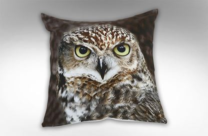 Picture of Owl Square Cushion