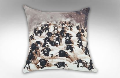 Picture of Sheep Flock Square Cushion