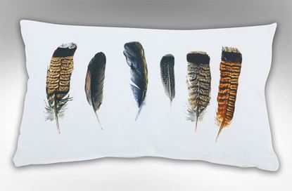 Picture of Six Feathers Rectangle Cushion