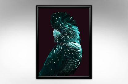 Picture of Deco Cockatoo