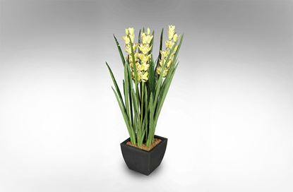 Picture of Orchid 120cm Yellow