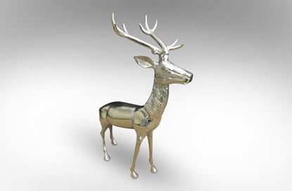 Picture of Shine Deer