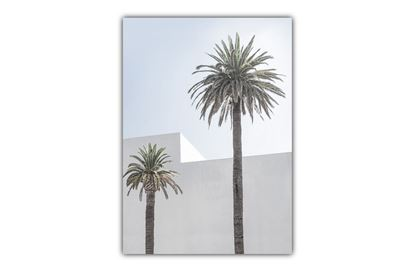 Picture of Tropical