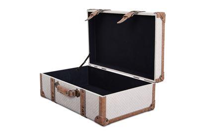 Picture of LG Vintage Luggage Snowflake