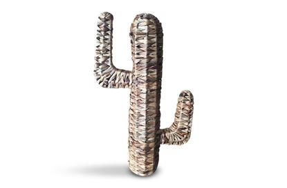 Picture of Natural Cactus Large