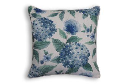 Picture of Hydrangea Blue