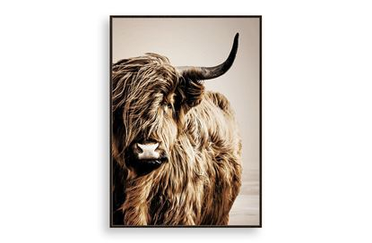 Picture of Winter Bovine