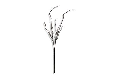 Picture of Bush Twig