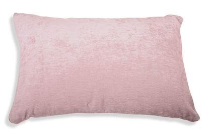 Picture of Dusty Rose Breakfast Cushion
