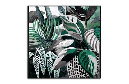 Picture of Daintree Green 120 x 120 B/F/C