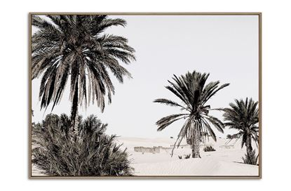 Picture of Desert Dream Two 100 x 140 N/F/C