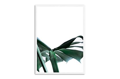 Picture of Green Palm Two 75 x 55 W/F