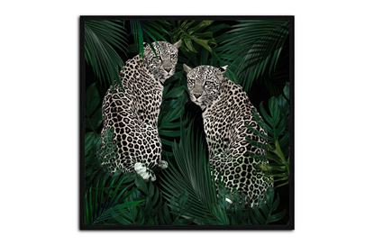 Picture of Jungle Fever 120 x 120 B/F