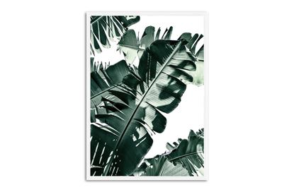 Picture of Tropic Leaf 75 x 55 W/F