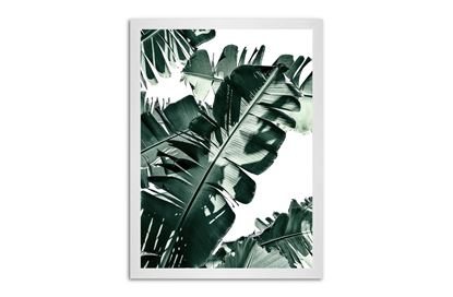Picture of Tropic Leaf 130 x 95 W/F