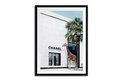 Picture of Chanel Jungle 160 x 120 B/F