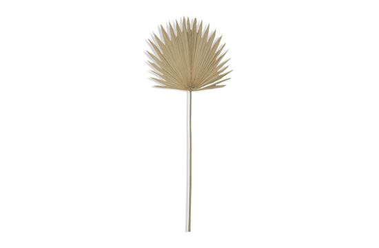 Picture of Sun Palm 103cm